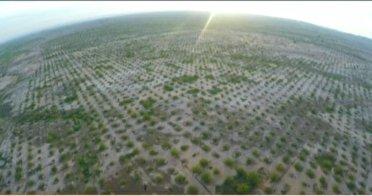 تداوم حیات در زاگرس با توجه ویژه به جنگل کاری و آبخیزداری در استان ایلام