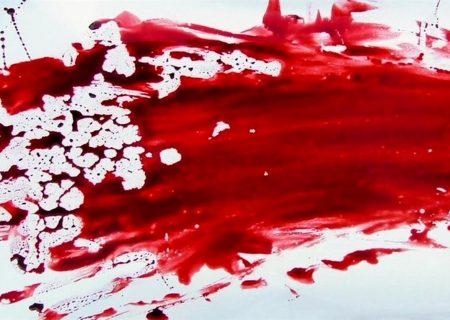 قتل برادر در ایلام/ قاتل و همدستش دستگیر شدند