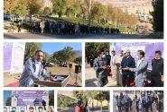همایش بزرگ پیاده روی خانوادگی به مناسبت گرامیداشت هفته تربیت بدنی در استان برگزار شد